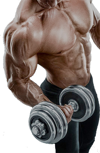 Anabolic Steroids: Its Uses As An Ergogenic Aid & Their