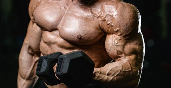 Steroids For BodyBuilding