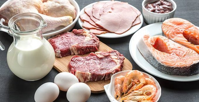 Best Protein Sources for Muscle Growth