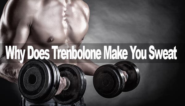 Trenbolone Sweat